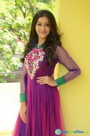 Pooja at Dwaraka Success Meet (25)