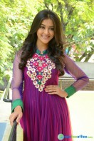 Pooja at Dwaraka Success Meet (29)