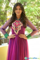 Pooja at Dwaraka Success Meet (31)