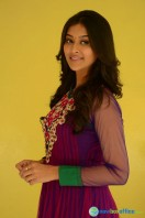 Pooja at Dwaraka Success Meet (7)